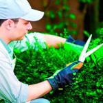 Serviço de conservação e limpeza
